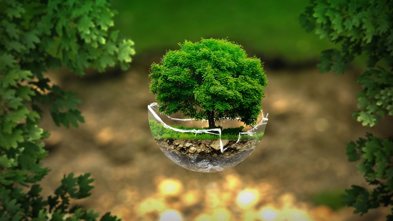 environment-2196690_1280