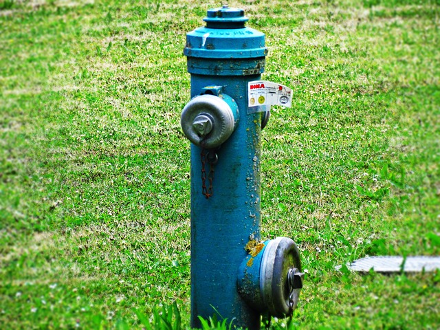 modrý hydrant